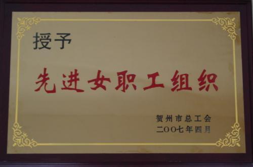 2007年 先进女职工组织